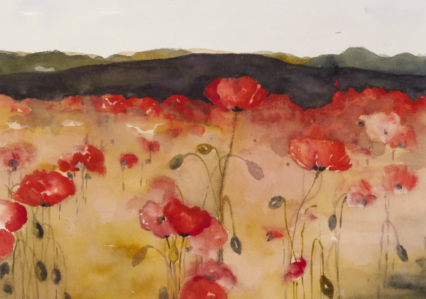 Chloe Cassidy_Poppy Fields